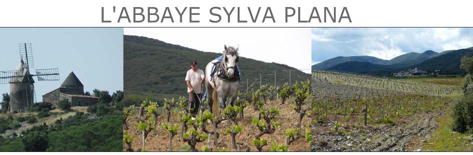 Sylva plana